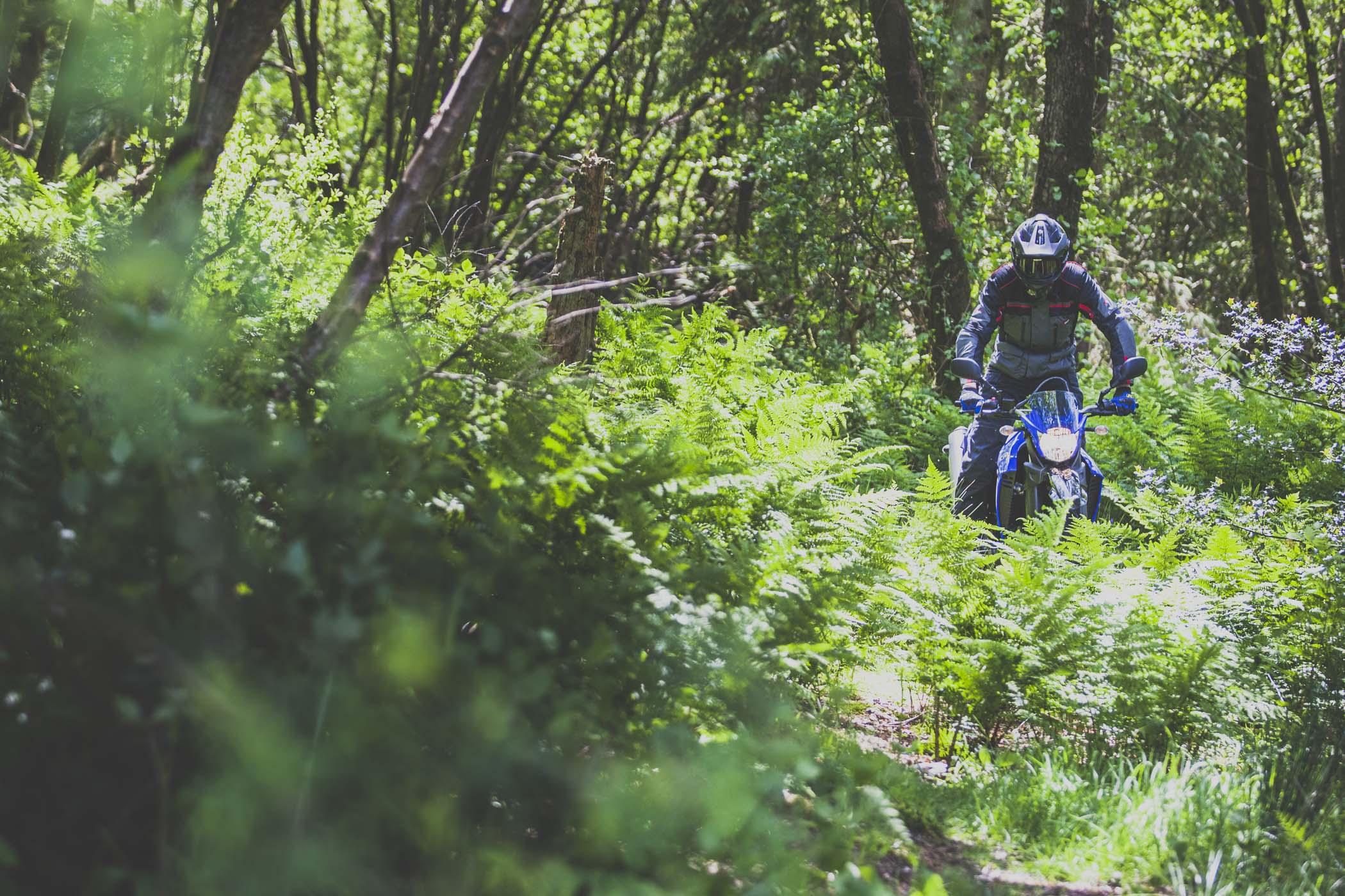 2015 suzuki v strom 1000 adventure review